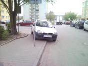 http://nieumiemparkowac.pl